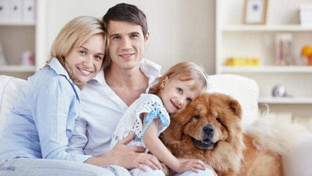 Wills & Trusts dog-young-family Direct Wills Fosse Park